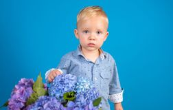 Childrens day. Small baby boy. Summer. Mothers or womens day. New life concept. Spring holiday. Little boy at blooming. Flower. Spring flowers. Childhood royalty free stock photos