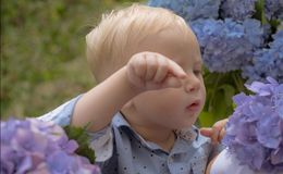 Childrens day. Small baby boy. Summer. Mothers or womens day. New life concept. Spring holiday. Little boy at blooming. Flower. Spring flowers. Childhood stock image