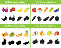Childrens educational game, find correct shadow silhouette. Items for the right shade. Vector illustration. Childrens educational game, find correct shadow Royalty Free Stock Images