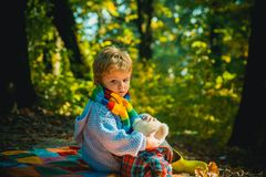 Childrens friendship. Atumn fun at the park. Happy kids autumn. Cute boy with Autumn Leaves on Fall Nature Background. Childhood concept royalty free stock photo