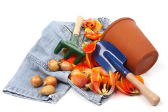 Childrens toy garden tools and a blue jeans Royalty Free Stock Images