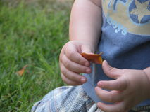 childs χέρια Στοκ φωτογραφίες με δικαίωμα ελεύθερης χρήσης