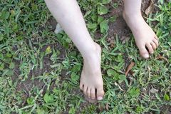 A Childs Feet. A close up view of a childs feet outside in the garden stock photography