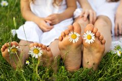 Childs feets with daisy flowers on green grass Stock Photography