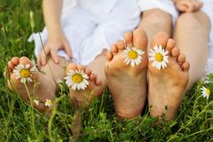 Childs feets with daisy flowers on green grass Royalty Free Stock Photography