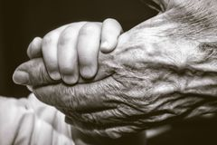 Childs hand and old wrinkled skin palm finger Royalty Free Stock Images