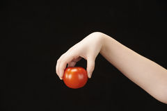 Childs hand with tomatoe. Black background Royalty Free Stock Photography