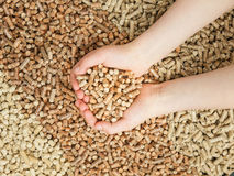 Childs hands cupping wood pellets Royalty Free Stock Images