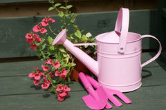 Childs pink watering can and tools Stock Photos