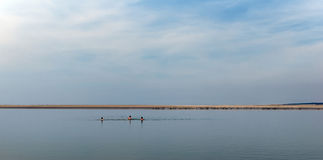 Childs and Seals in the bay of Somme. Bay of Somme in Picardy coast royalty free stock image