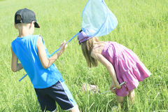 Childs who try to catch some butterfly with net Royalty Free Stock Photo