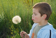 Childs wish Stock Photo