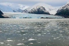 Chile - Amalia Glacier - Bernardo O'Higgins National Park Royalty Free Stock Photos