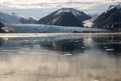 Chile - Amalia Glacier Landscape Royalty Free Stock Photography