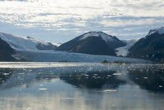 Chile - Amalia Glacier Landscape Stock Image