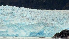 Chile - Amalia Glacier Landscape stock video footage