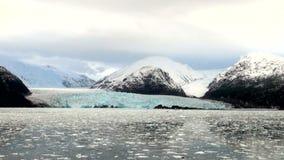 Chile - Amalia Glacier Landscape stock video