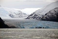 Chile - Amalia Glacier Scenery Stock Image