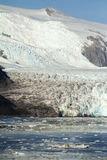 Chile - Amalia Glacier In Sunny Day Stock Photography