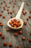 Chile Chiltepin Royalty Free Stock Images