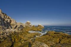 Chile. Coast. Bay. Stock Photos