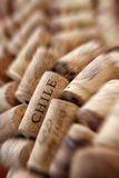 Chile cork plug Stock Photography