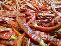 Chile del gusto de las fotos lankankan del sri Imagenes de archivo