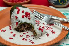 Chile en Nogada is a traditional mexican dish. Poblano pepper st. Uffed with ground meat, covered in walnut cream and pomgrenade seeds royalty free stock photos