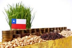Chile flagga som vinkar med bunten av pengarmynt och högar av vete Arkivbild