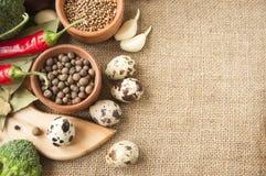 Chile, garlic, onions, broccoli, coriander, mushrooms, olive oil Stock Photography