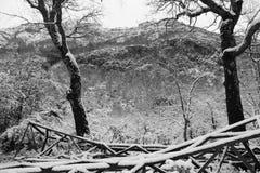 Chile-Gedächtnisse Stockbilder