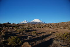 chile lauca park narodowy volcanoes Zdjęcie Royalty Free