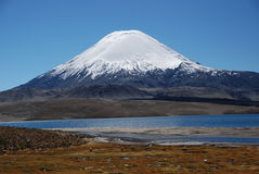 chile laucanationalpark Royaltyfria Bilder