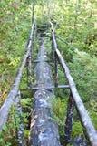 Chile Nature Log Bridge Path Stock Photo