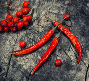 chile Peperoncino rosso rovente del pepe Su fondo di legno scuro Fotografia Stock