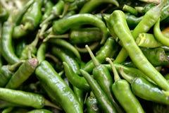 chile peppar Arkivfoto