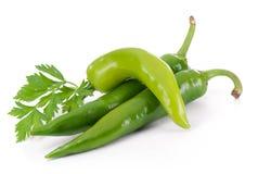 Chile peppar med persiljasidor Royaltyfri Fotografi