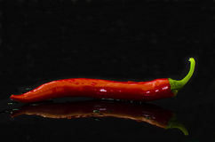 Chile Pepper Royalty Free Stock Photography
