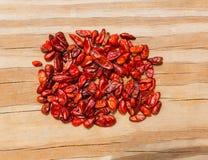 Chile Piquin gorącego chili pieprz Obraz Royalty Free