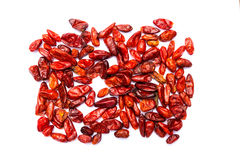 Chile Piquin gorącego chili pieprz Obrazy Stock