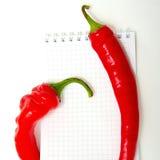Chile rojo en el cuaderno abierto imagen de archivo