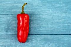 Chile rojo en la madera azul Imágenes de archivo libres de regalías
