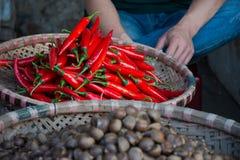 Chile rojo fresco en cesta en mercado vietnamita Imagen de archivo libre de regalías