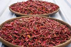 Chile rojo secado Imagenes de archivo