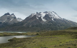 Chile. Torres del Paine Natural Park. Royalty Free Stock Images