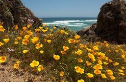 Chile, Tunquen Beach Stock Photo