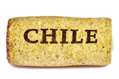 Chile wine cork. Stock Image
