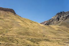 Chilean Andes mountains with yellow fields stock images