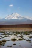 Chilean Atacama Desert Stock Photo