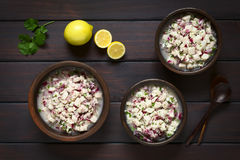 Chilean Ceviche Royalty Free Stock Images